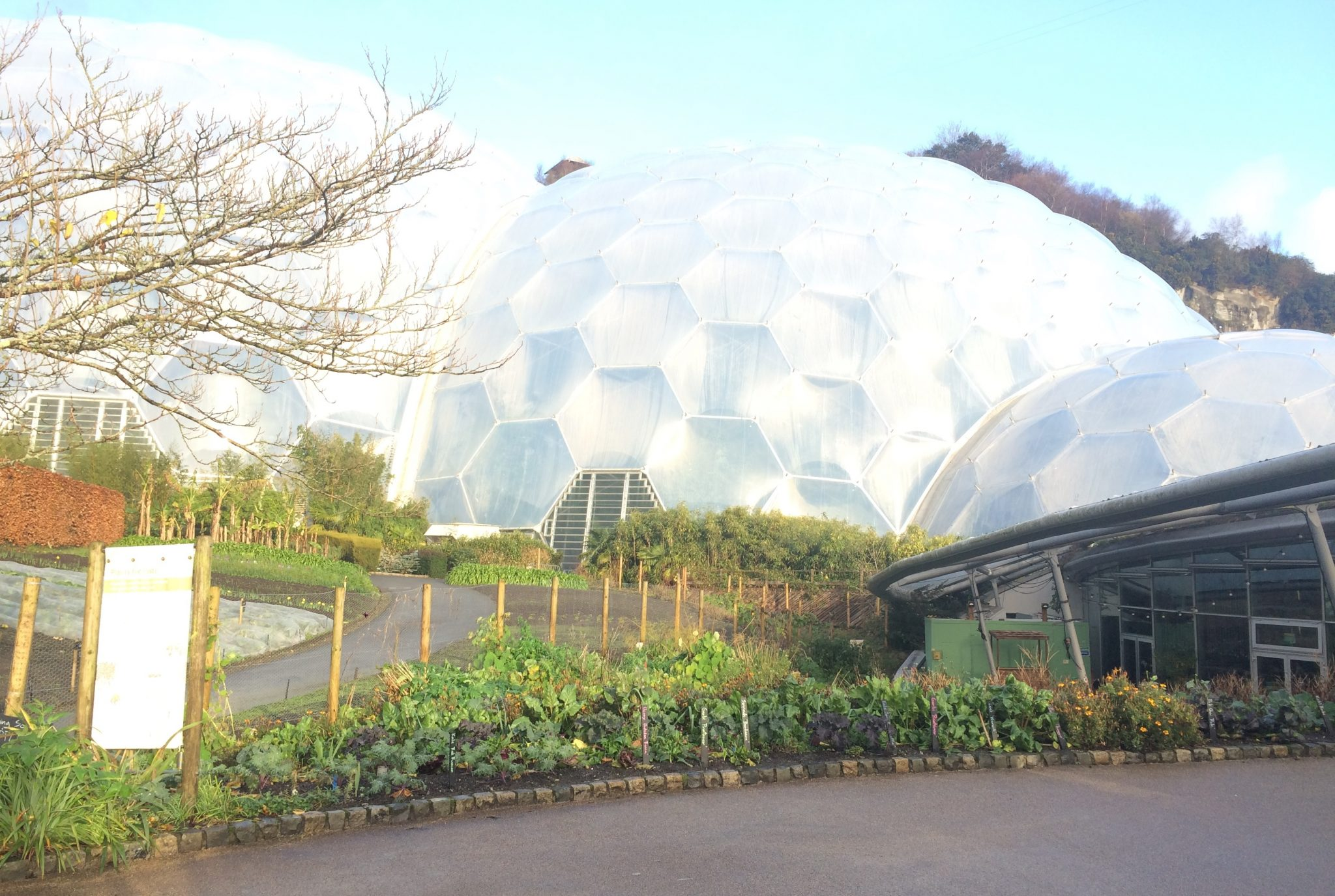 Eden Project parkrun